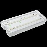 Светильник LED ДПА-5042 1ч постоянный/непостоянный Ni-CD IP65
