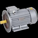 Электродвигатель АИР 100L4 380В 4кВт 1500об/мин 2081 (лапы+фланец) DRIVE ИЭК