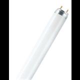 Лампа люминесцентная G13 36Вт 6500К 2500Lm 220В трубка Basic T8 Ledvance/Osram